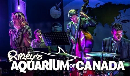 Visit-Ripley-Aquarium-Canada-Toronto-Friday-Night-Jazz