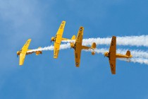 Canadian Harvard Aerobatic Team (1)