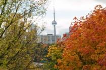 fall-colours-web.jpg.size.xxlarge.promo