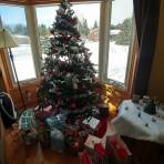 現地ならではのクリスマス!!