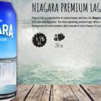 カナダ地ビールのおすすめ